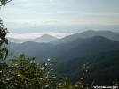 Albert Mountain Vista
