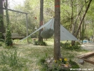 Hammock Tarptent -  Low pitch by Youngblood in Hammock camping