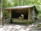 A. Rufus Morgan Shelter by Youngblood in North Carolina & Tennessee Shelters