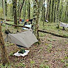 Campsite 2.4 Miles North of Partnership Shelter
