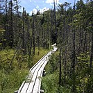 ME Bog Bridge by Lucy Lulu in Trail & Blazes in Maine