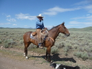 Montana Cowboy by Lucy Lulu in Continental Divide Trail