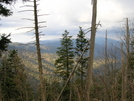 View In The Smokeys by Lucy Lulu in Trail & Blazes in North Carolina & Tennessee