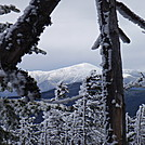 mount washington through the trees 3-31-2012