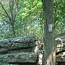 Dan's Pulpit--AT near Eckville, PA