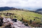 Grayson Highlands by MicahDawgNC in Views in Virginia & West Virginia
