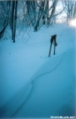 Snow Drifts by MicahDawgNC in North Carolina &Tennessee Trail Towns