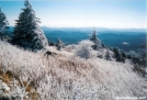 View from Whitetop by MicahDawgNC in Views in Virginia & West Virginia