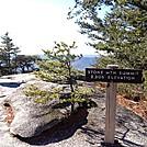 Stone Mtn. Summit