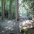 Alum Cave Nature Trail July 2012 by LisaM in Day Hikers