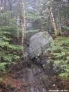 Trail up Roan High Knob by MoBeach42 in Trail & Blazes in North Carolina & Tennessee