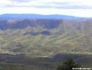 Cool trees by MoBeach42 in Views in Virginia & West Virginia