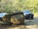 Rock at Springer Mtn. Parking Lot by Newb in Springer Mtn Gallery