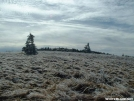The beauty of ice on Grassy Ridge by Hiking Rooster in Views in North Carolina & Tennessee