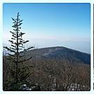 Hawksbill, SNP, VA by virginia jen in Views in Virginia & West Virginia