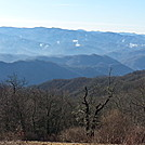 View along the trail... by MadisonStar in Trail & Blazes in North Carolina & Tennessee