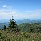 Just before Clingmans Dome by Dropfgoldnsun in Section Hikers
