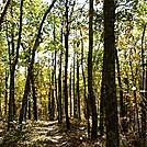 appalachian trail in october