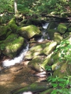 Gsmnp, July 1-6 08 by Bearpaw in Trail & Blazes in North Carolina & Tennessee
