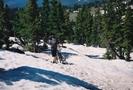Hard-core biking near Georgia Pass by Bearpaw in Colorado Trail