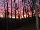 Sunset - Mammoth Cave Np by Bearpaw in Other Trails