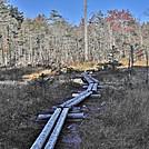 Northville Placid Trail in Adirondacks