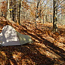Allegheny Trail campsite by Cookerhiker in Other Trails