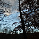 Early morning sky on Allegheny Trail