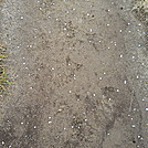 Hailstones on John Muir Trail