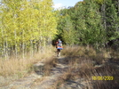 Cookerhiker Hikes The Black Forest Trail