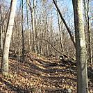 Shenandoah NP by Cookerhiker in Trail & Blazes in Virginia & West Virginia