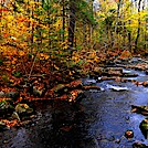 Autumn along the AT in VT by Cookerhiker in Trail & Blazes in Vermont