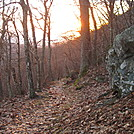 Early morning in Shenandoah NP
