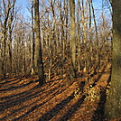 Maryland in November by Cookerhiker in Trail & Blazes in Maryland & Pennsylvania
