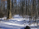 Unbroken Snow on AT in Maryland by Cookerhiker in Views in Maryland & Pennsylvania