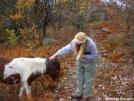 Scarf & friend by Cookerhiker in Trail & Blazes in Virginia & West Virginia