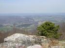 Rice Field view by Cookerhiker in Views in Virginia & West Virginia