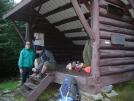 Northern Harrier at Emily Proctor Shelter