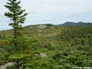 Mt. Success summit by Cookerhiker in Views in New Hampshire