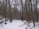 N. Harrier poses on snowy trail by Cookerhiker in Trail & Blazes in Virginia & West Virginia