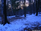 Late afternoon at Silver Hill campsite by Cookerhiker in Views in Connecticut
