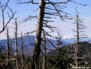 En-route to Pecks Corner by Cookerhiker in Views in North Carolina & Tennessee