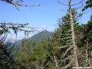 Avery Peak from Little Bigalow