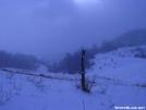 Blaze in field by Cookerhiker in Trail & Blazes in Virginia & West Virginia