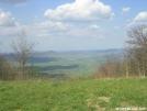 Along Chestnut Ridge