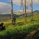Colorado Trail thruhike 2011