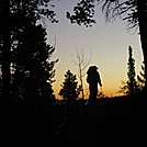 Colorado Trail - Northern Harrier's silhouette by Cookerhiker in Colorado Trail