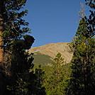 Colorado Trail - Mt. Shavano