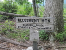 Crossing Eastern Continental Divide On Allegheny Trail by Cookerhiker in Other Trails