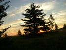 Sunrise At Dolly Sods Wilderness